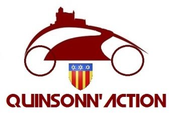 logo qinsonnaction